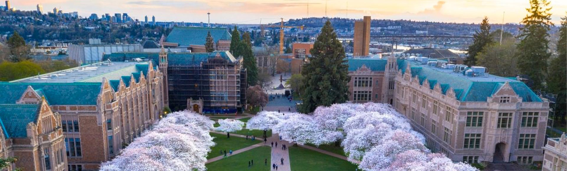 university-of-washington.jpg